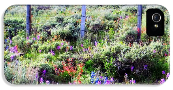Field Of Wildflowers IPhone 5 Case