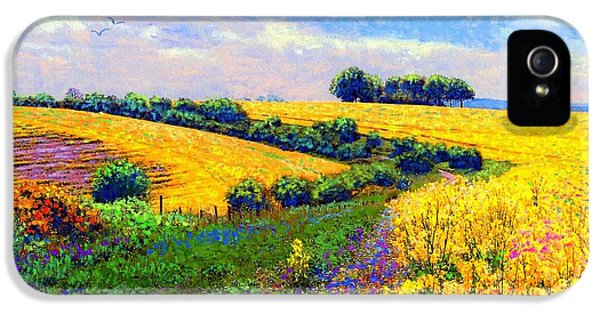 Fields Of Gold IPhone 5 Case by Jane Small