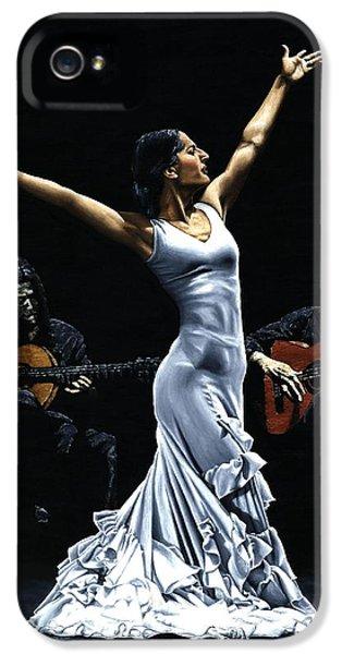 Finale Del Funcionamiento Del Flamenco IPhone 5 Case by Richard Young
