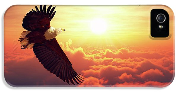 Eagle iPhone 5 Case - Fish Eagle Flying Above Clouds by Johan Swanepoel