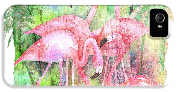 Flamingo Five IPhone 5 Case by Arline Wagner