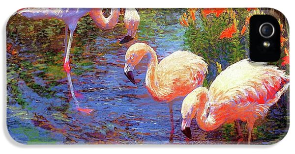 Flamingos, Tangerine Dream IPhone 5 Case
