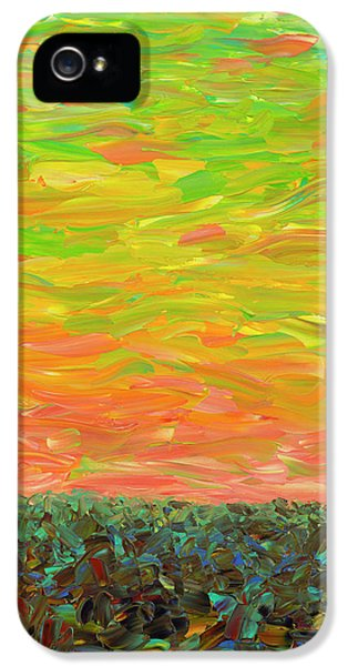 Flatland - Sunset Looking West IPhone 5 Case by James W Johnson