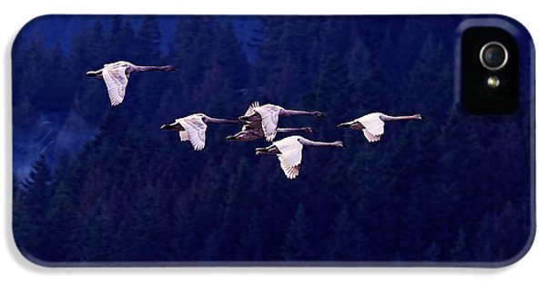 Flight Of The Swans IPhone 5 Case