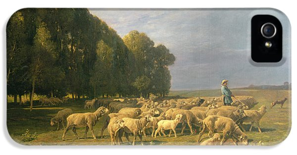 Flock Of Sheep In A Landscape IPhone 5 Case by Charles Emile Jacque