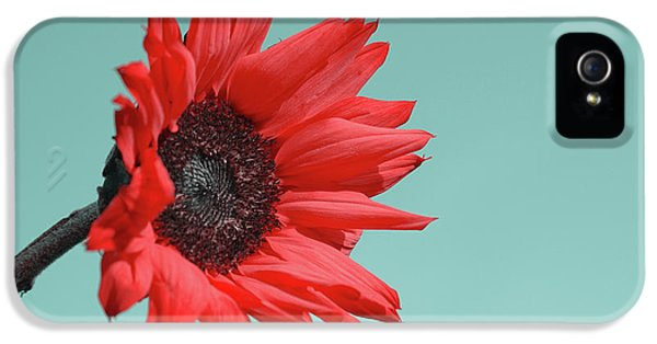 Floral Energy IPhone 5 Case by Aimelle