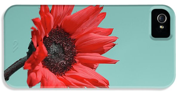 Flowers iPhone 5 Case - Floral Energy by Aimelle