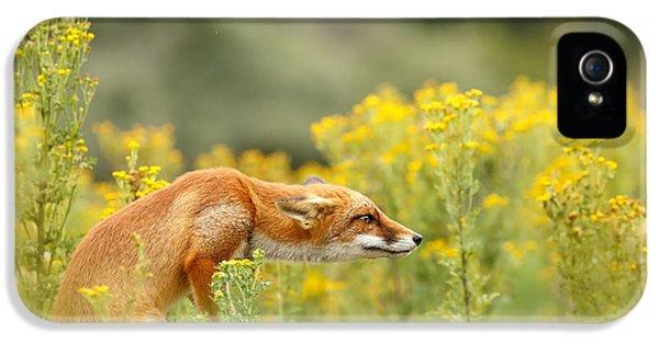 Flower Fox IPhone 5 Case