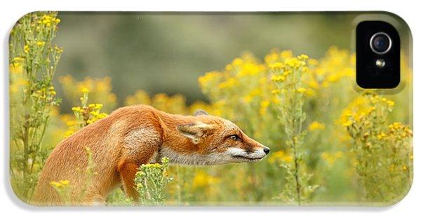 Flower Fox IPhone 5 Case by Roeselien Raimond