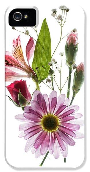 Flowers Transparent 1 IPhone 5 Case by Tom Mc Nemar