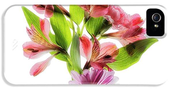 Flowers Transparent  2 IPhone 5 Case by Tom Mc Nemar