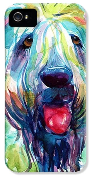 Fluffy Wheaten Terrier Portrait By IPhone 5 Case