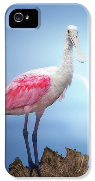 Foggy Morning Spoonbill IPhone 5 Case