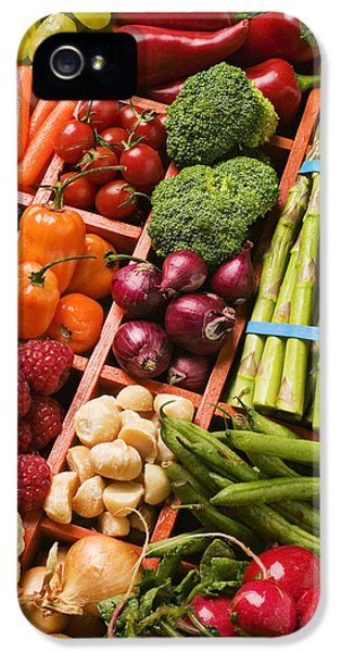 Food Compartments  IPhone 5 Case by Garry Gay