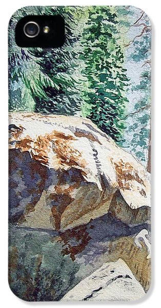 Forest IPhone 5 Case by Irina Sztukowski