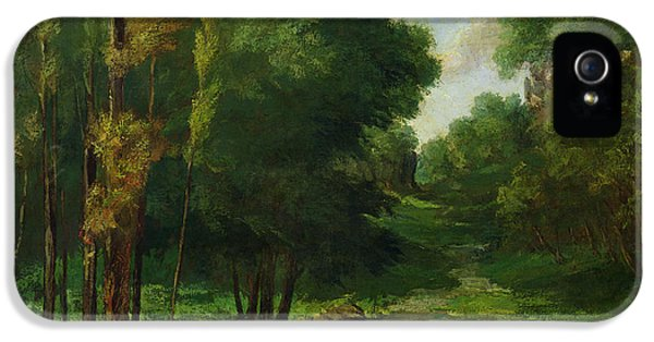 Forest Landscape IPhone 5 Case by Gustave Courbet