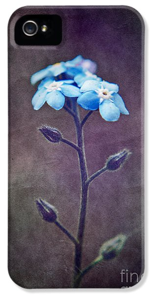 Forget Me Not 04 - S6ct7b IPhone 5 Case