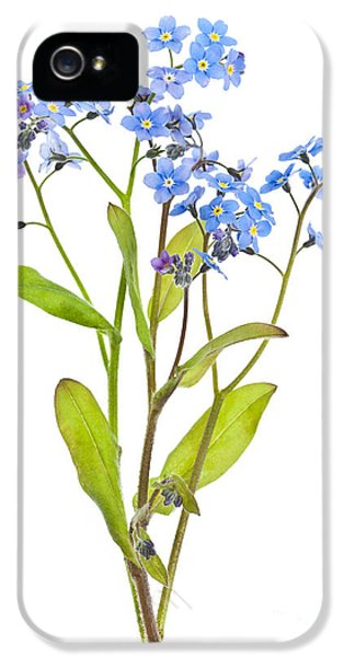 Forget-me-not Flowers On White IPhone 5 Case by Elena Elisseeva