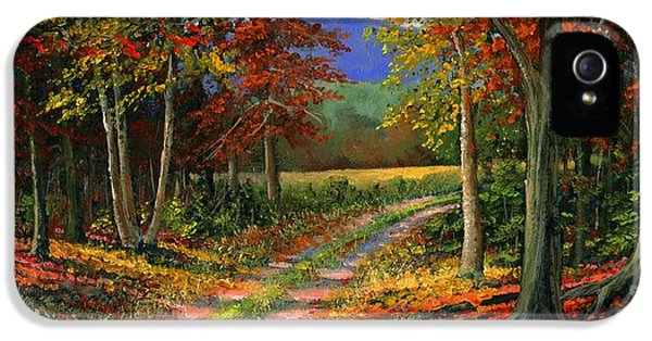 Road iPhone 5 Cases - Forgotten Road iPhone 5 Case by Frank Wilson