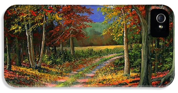 Forgotten Road IPhone 5 Case by Frank Wilson