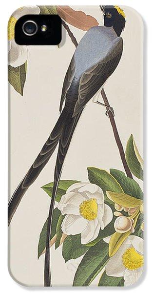 Fork-tailed Flycatcher  IPhone 5 Case by John James Audubon