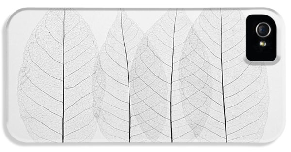Four Leafs IPhone 5 Case