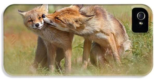 Foxy Love Series - But Mo-om II IPhone 5 Case by Roeselien Raimond