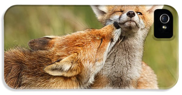 Foxy Love Series - But Mo-om IPhone 5 Case by Roeselien Raimond