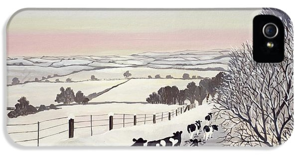Rural Scenes iPhone 5 Case - Friesians In Winter by Maggie Rowe