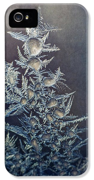 Frost IPhone 5 Case by Scott Norris