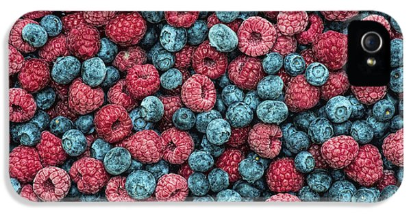 Frozen Berries IPhone 5 Case by Tim Gainey