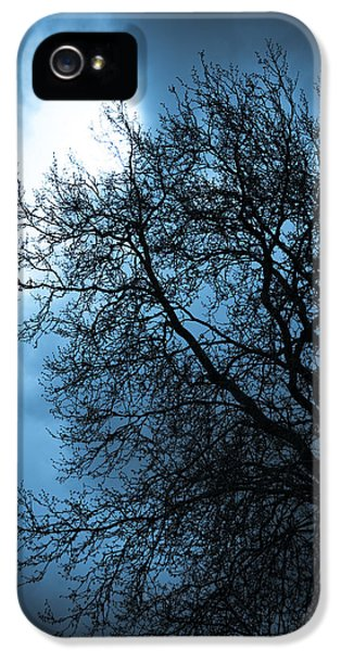 Sillouette iPhone 5 Cases - Full Moon iPhone 5 Case by Nila Newsom