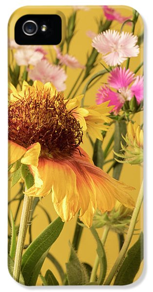 Gaillardia And Dianthus IPhone 5 Case by Richard Rizzo