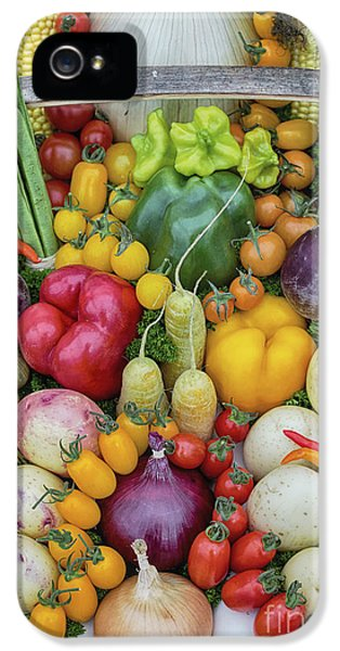Garden Produce IPhone 5 Case by Tim Gainey