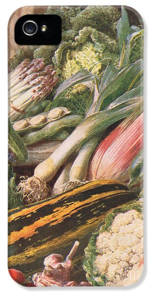 Garden Vegetables IPhone 5 Case by Louis Fairfax Muckley