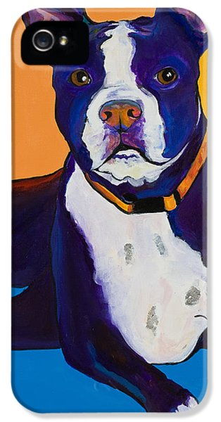Georgie IPhone 5 Case by Pat Saunders-White