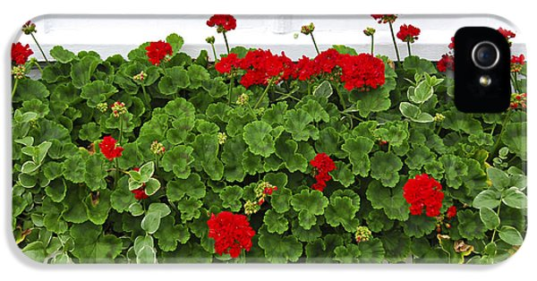 Geraniums On Window IPhone 5 Case by Elena Elisseeva