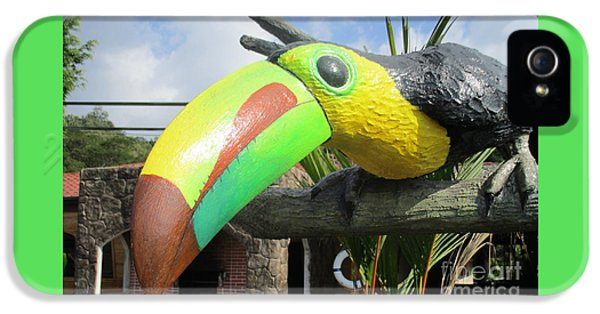 Giant Toucan IPhone 5 Case by Randall Weidner