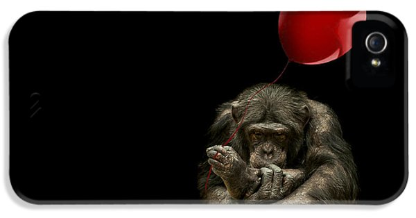 Girl With Red Balloon IPhone 5 / 5s Case by Paul Neville