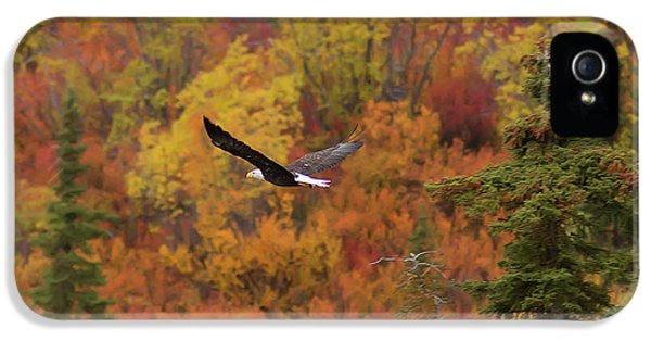 Glide Path IPhone 5 Case by Ed Boudreau