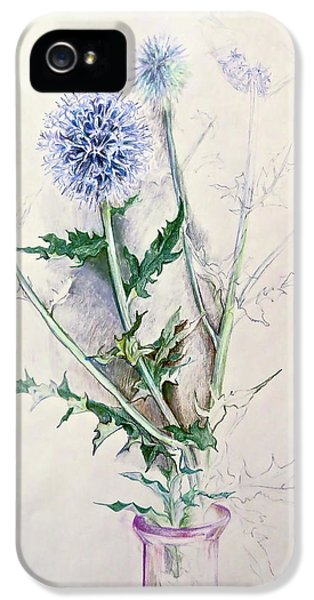 Globe Thistle In Amethyst Glass IPhone 5 Case