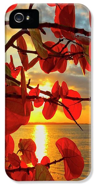 Beach Sunset iPhone 5 Case - Glowing Red by Stephen Anderson