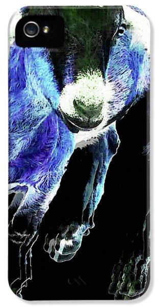 Goat Pop Art - Blue - Sharon Cummings IPhone 5 Case by Sharon Cummings