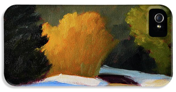 IPhone 5 Case featuring the painting Golden Light Winter Road by Nancy Merkle