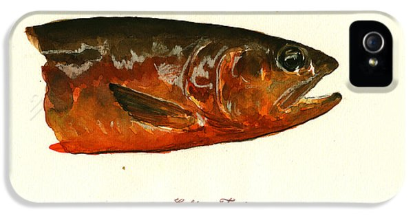Golden Trout  IPhone 5 / 5s Case by Juan  Bosco