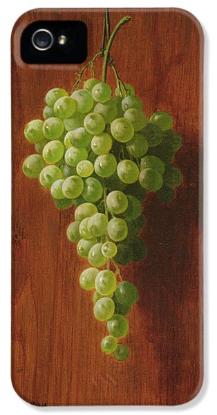 Grapes   Green IPhone 5 Case