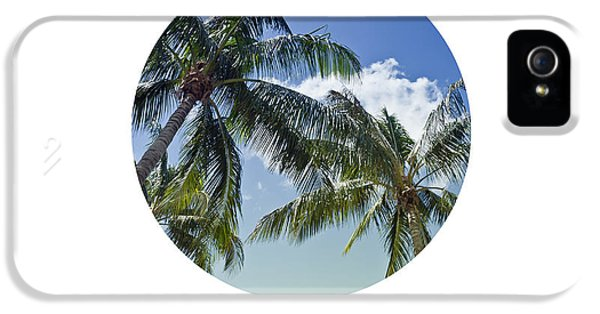 Breathe iPhone 5 Case - Graphic Art Breathe - Palm Trees by Melanie Viola