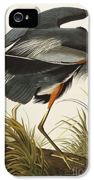 Great Blue Heron IPhone 5 Case by John James Audubon
