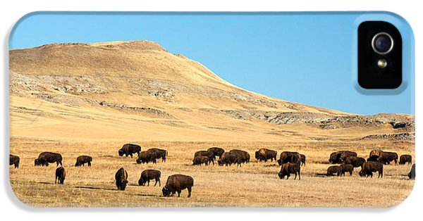 Great Plains Buffalo IPhone 5 Case by Todd Klassy