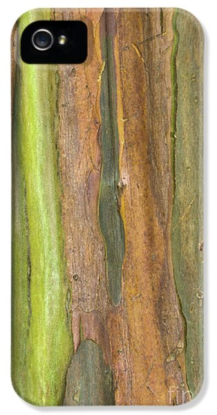IPhone 5 Case featuring the photograph Green Bark 3 by Werner Padarin